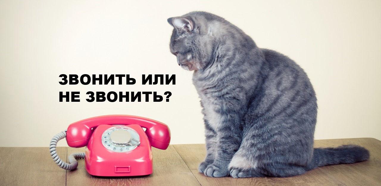 Когда звонить клиентам?